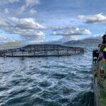 CXXX_SSC_Diving operations_aquaculture_200304 1_1