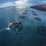 CXXX_SSC_Diving-operations_aquaculture_200304-5